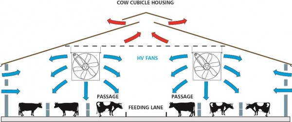 Extract warm air from livestock buildings and replace with cool, fresh air