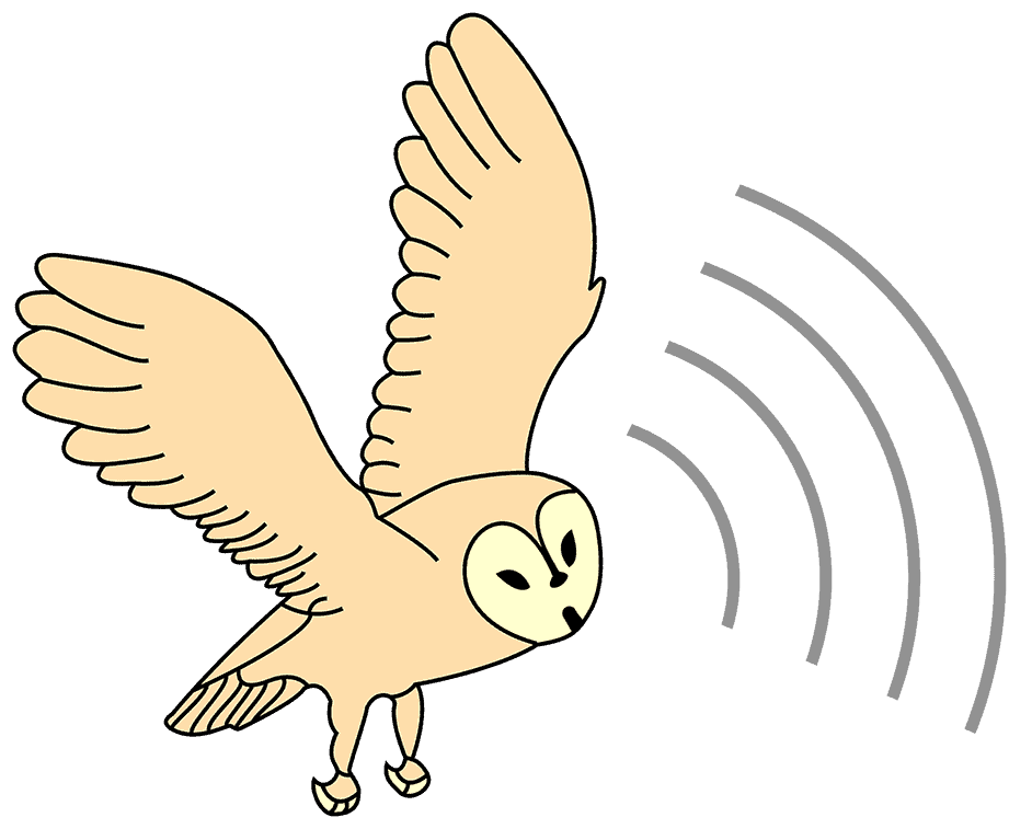 Мартин Лисхман Барн сова бежични аутоматски систем за праћење и контролу усјева