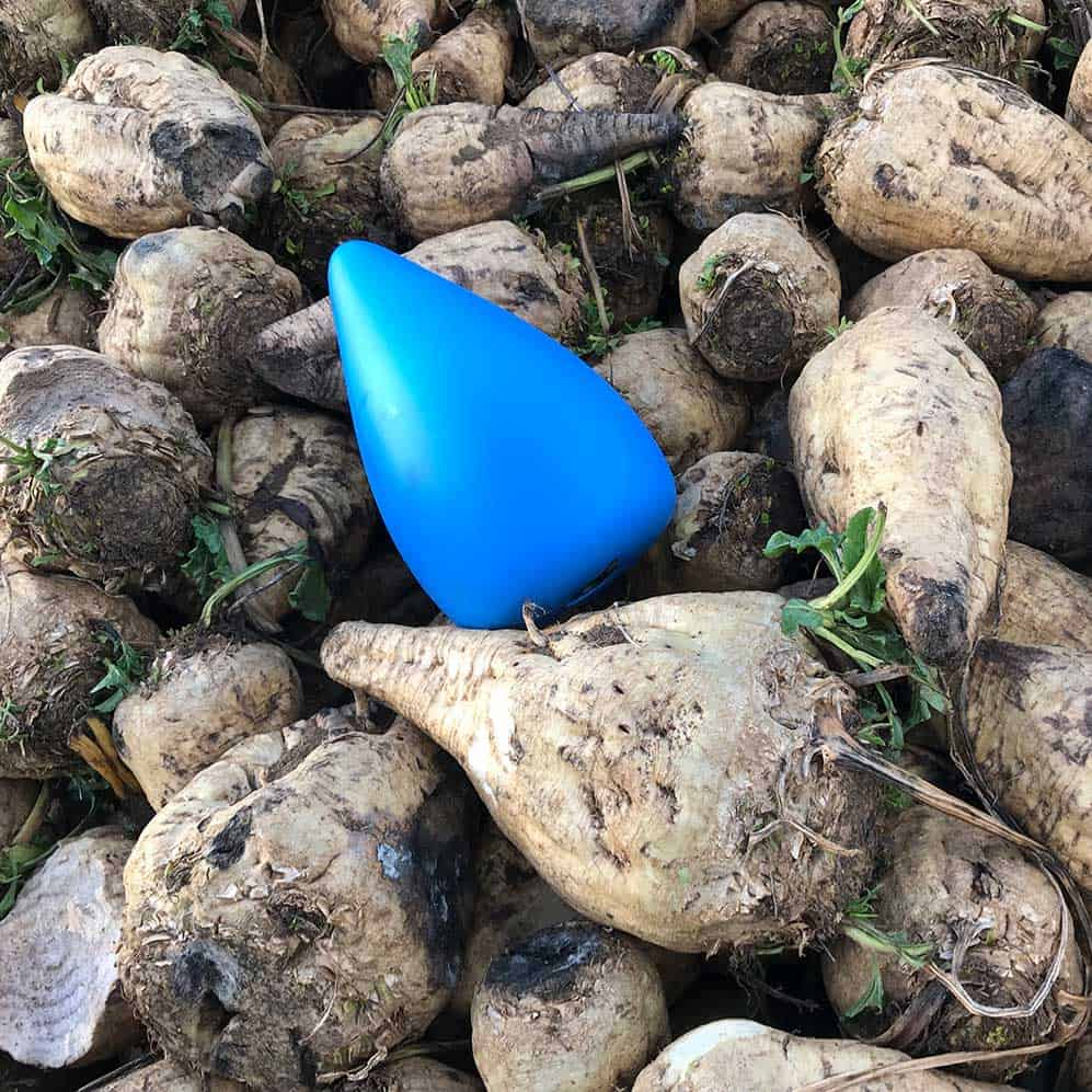 beetlog electronic sugar beet data logger