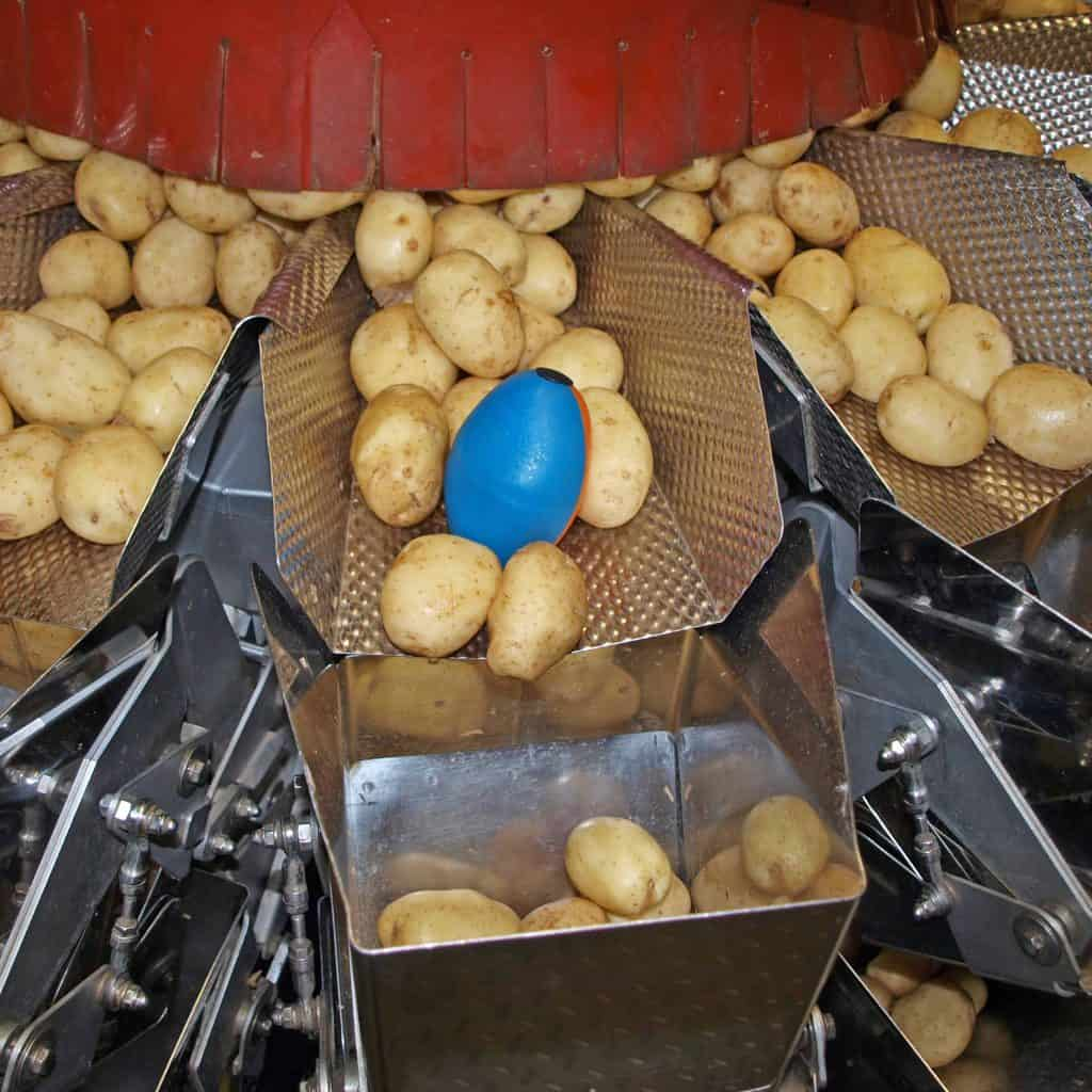 tuberlog electronic potato used by packing machines to help reduce damage