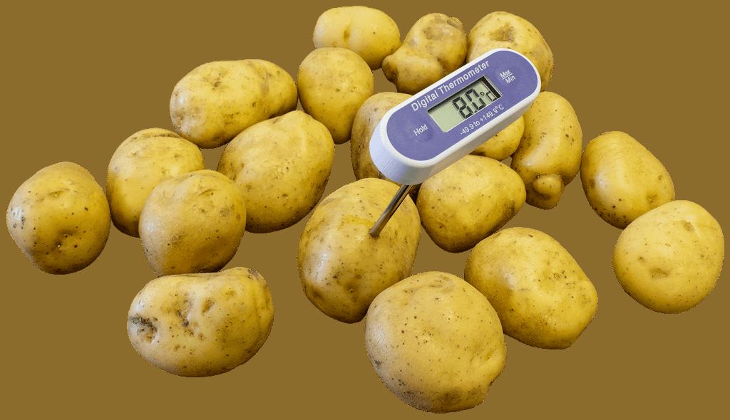 potato temperature monitoring
