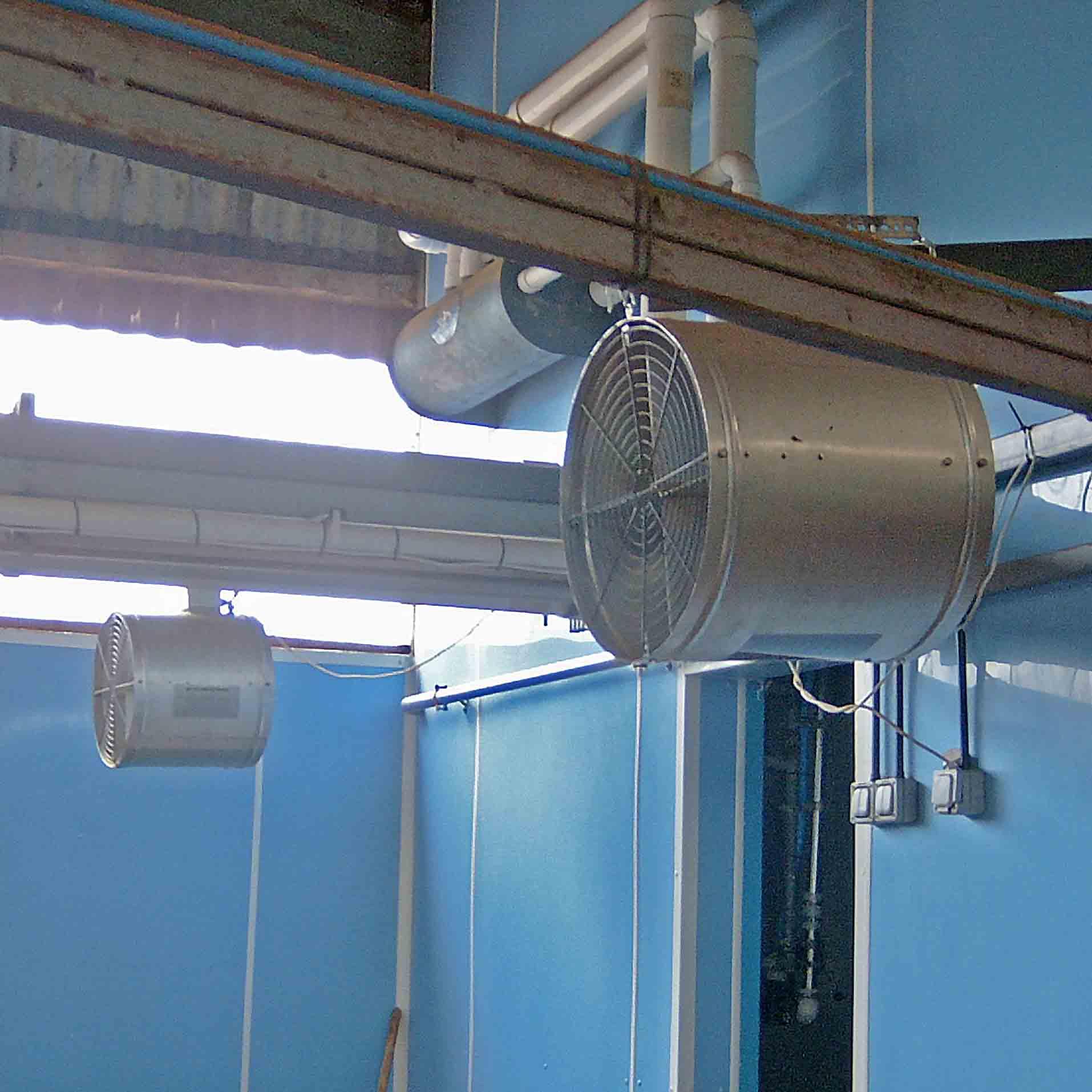 Das Lüftungssystem für Viehgebäude bietet mehrere Ventilatorversionen